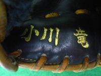 ogawa_shisyu1