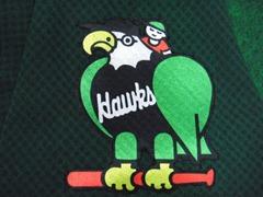 hawkswappen1