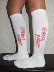 kuwagai.socks2